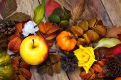 Fondo rústico de la acción de gracias con la manzana, conos del pino Foto de archivo libre de regalías