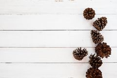 Fondo rústico de la Navidad con el cono del pino en la madera blanca Imágenes de archivo libres de regalías