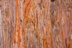 Fondo rústico de madera Imagenes de archivo
