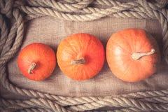 Fondo rústico del otoño con las calabazas y marco de la cuerda en tela Fotos de archivo libres de regalías