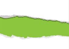 Fondo rasgado verde de la tira Fotos de archivo