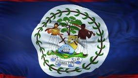 Fondo realista de la bandera de BELICE que agita Imágenes de archivo libres de regalías