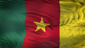 Fondo realista de la bandera del CAMERÚN que agita Foto de archivo