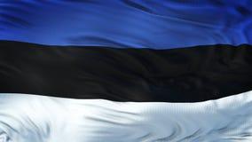 Fondo realista de la bandera de ESTONIA que agita Imágenes de archivo libres de regalías