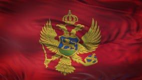 Fondo realista de la bandera de MONTENEGRO que agita Fotografía de archivo