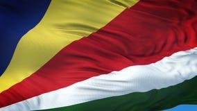 Fondo realista de la bandera de SEYCHELLES que agita Imagen de archivo