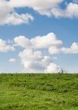 Fondo realista de la hierba y del cielo. Foto de archivo libre de regalías
