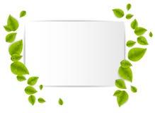 Fondo realista de las hojas Imagenes de archivo
