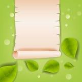 Fondo realista de las hojas Imágenes de archivo libres de regalías
