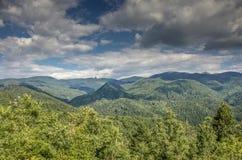 """Fondo relajante del †salvaje de la naturaleza """", Mariovo, Macedonia Fotos de archivo libres de regalías"""