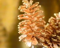 Fondo reluciente del día de fiesta del cono del pino del oro Fotografía de archivo