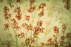 Fondo retro abstracto de las flores llamativas o de pavo real filtradas por la textura del grunge, estilo chino Imagen de archivo libre de regalías