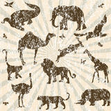 Fondo retro del grunge con las siluetas de los animales Foto de archivo libre de regalías