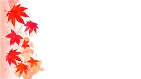Fondo rojo de la acuarela de las hojas de otoño Fotos de archivo libres de regalías