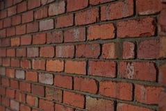 Fondo rojo de la pared de ladrillo Foto de archivo