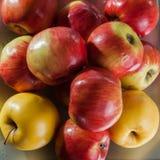 Fondo rojo de las manzanas Foto de archivo libre de regalías