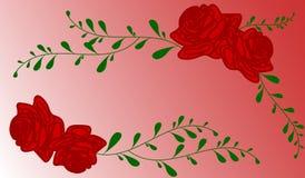 Fondo rojo de las rosas Fotografía de archivo