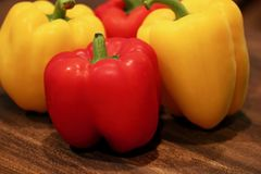 Fondo rojo y amarillo de la macro del paprika Fotos de archivo libres de regalías
