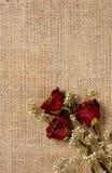 Fondo romántico imagen de archivo