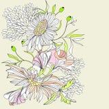 Fondo romántico con las flores Imágenes de archivo libres de regalías
