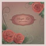 Fondo romántico del vector con las rosas Imágenes de archivo libres de regalías