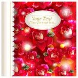 Fondo romántico floral Fotos de archivo libres de regalías