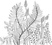 Fondo romántico de la flor del doodle Fotos de archivo libres de regalías