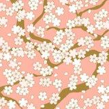 Fondo rosa e dorato del modello di fiore del fiore di ciliegia Fotografie Stock