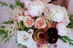 Fondo rosa lanuginoso dei fiori delle peonie immagini stock libere da diritti