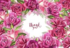 Fondo rosa naturale delle rose Pagina delle rose rosse e rosa, illustrazione dell'acquerello Immagine Stock