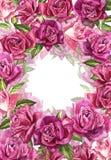 Fondo rosa naturale delle rose Pagina delle rose rosse e rosa, illustrazione dell'acquerello Immagine Stock Libera da Diritti