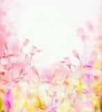 Fondo rosado brillante con las flores de campanas Imagen de archivo libre de regalías