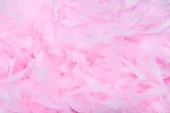 Fondo rosado de la boa de pluma Fotografía de archivo