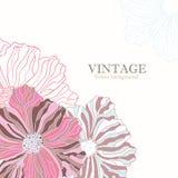 Fondo rosado de la flor del vintage Foto de archivo