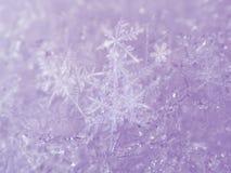 Fondo rosado de la nieve con los copos de nieve blancos Foto de archivo libre de regalías