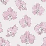 Fondo rosado de la orquídea Fotografía de archivo
