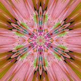 Fondo rosado del caleidoscopio de la flor fotografía de archivo libre de regalías