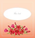 Fondo rosado del vector con los lirios de las flores Imágenes de archivo libres de regalías