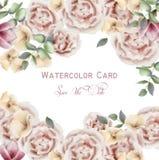 Fondo rosado delicado de la acuarela del vector de las rosas Papel pintado de las flores de la elegancia Ramos decorativos del vi libre illustration