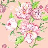 Fondo rosado inconsútil con las flores del peony Imágenes de archivo libres de regalías
