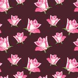 Fondo rosado natural de las rosas Modelo inconsútil de las rosas rojas y rosadas, ejemplo de la acuarela Imagen de archivo