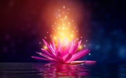 Fondo rosso-chiaro di porpora della scintilla della luce di galleggiamento di Lotus Pink immagini stock libere da diritti