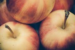 Fondo rosso d'annata della mela Fotografia Stock
