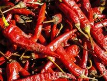 Fondo rosso dei peperoncini rossi Immagini Stock Libere da Diritti