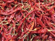 Fondo rosso dei peperoncini rossi Fotografia Stock Libera da Diritti