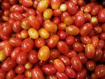 Fondo rosso dei pomodori Fotografia Stock Libera da Diritti