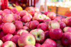 Fondo rosso della frutta delle mele delle patatine fritte di miele immagine stock libera da diritti
