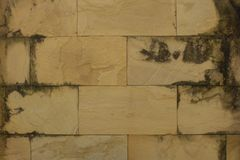 Fondo rosso di lerciume di struttura del muro di mattoni Fotografie Stock