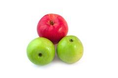 Fondo rosso e verde di bianco dell'isolato della mela Immagini Stock Libere da Diritti