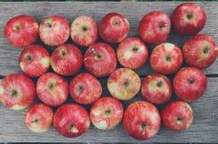 Fondo rosso maturo fresco dolce del raccolto della mela Fotografie Stock Libere da Diritti